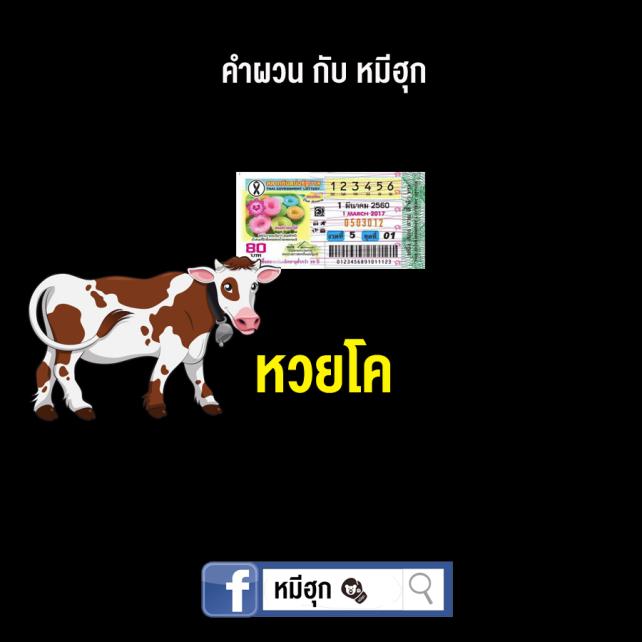 lottery9.jpg
